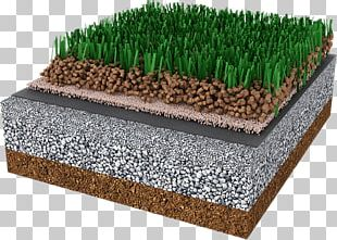 Artificial Turf Lawn Carpet Crumb Rubber Synthetic Fiber PNG