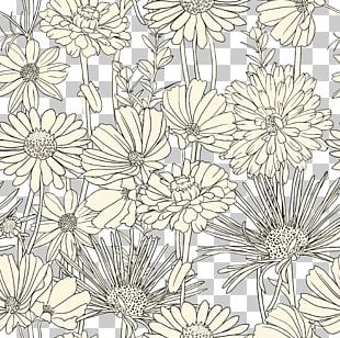 Draw Flowers Drawing Pattern PNG