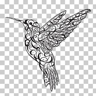 Hummingbird Tattoo PNG