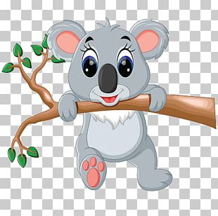 Koala Giant Panda Cartoon PNG