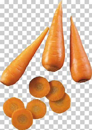 Carrot Soup Root Vegetables PNG