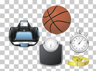 Sports Equipment Ball Game Basketball PNG