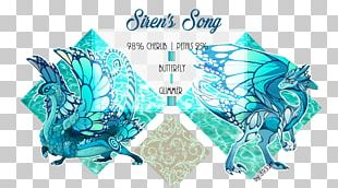 Turquoise Graphics Font Product Organism PNG