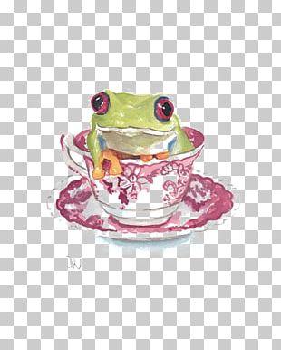 Australian Green Tree Frog Watercolor Painting Amphibian PNG