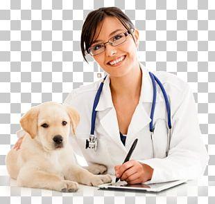 Labrador Retriever Puppy Veterinarian Cat Pet PNG