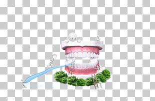Dentistry Gums Dental Public Health Toothbrush PNG