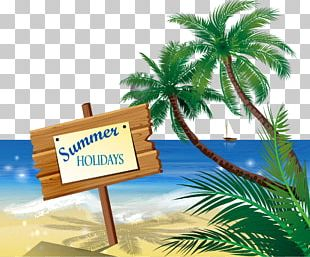 Beach Sand Illustration PNG
