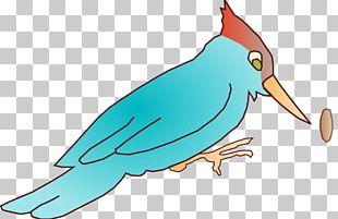 Woody Woodpecker Scalable Graphics PNG