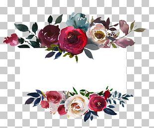Floral Design Flower Color PNG