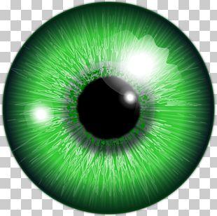 Human Eye Green Iris Color PNG