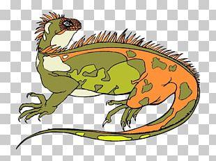 Reptile Lizard Amphibian Euclidean PNG