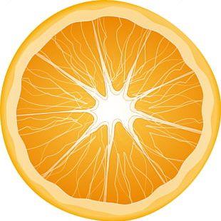 Citrus Xd7 Sinensis Orange Slice Fruit PNG
