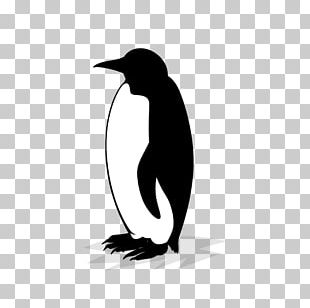Cryptocurrency Bitcoin King Penguin BitMEX PNG