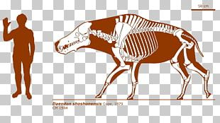 ARK: Survival Evolved Dinosaur Tame Animal Drawing PNG