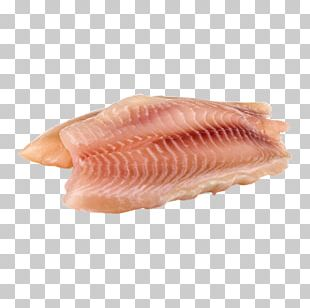 Fish Products USDA Rural Development Tilapia Fish Fillet PNG