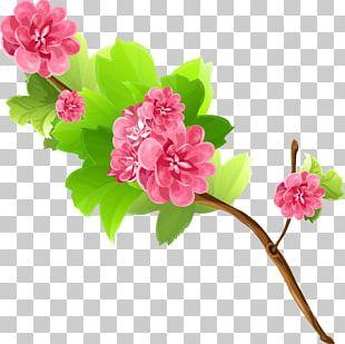 Flower Bouquet Branch PNG