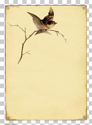 Paper Bird In The Tree Vintage Clothing PNG