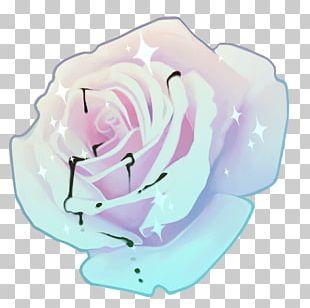 Garden Roses Cabbage Rose Cut Flowers Petal Pink M PNG