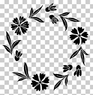 Window Frames Flower Painting Pattern PNG