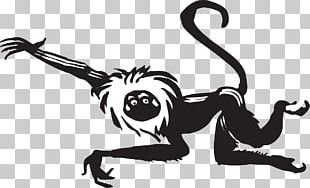 Black And White Monkey PNG