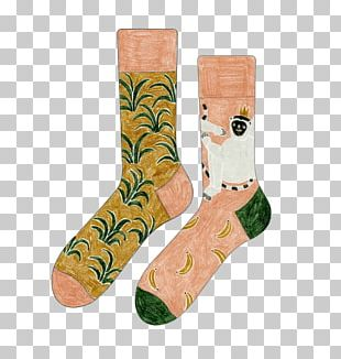 Sock Animation Drawing PNG