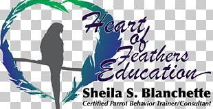 Bird Beak Education Behavior Feather PNG