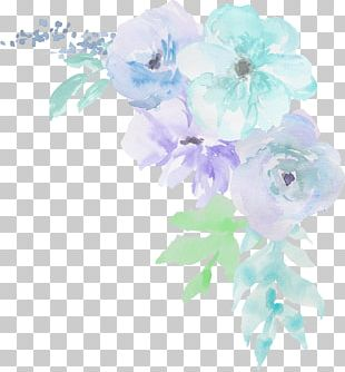 Cabbage Rose Garden Roses Floral Design Cut Flowers Petal PNG