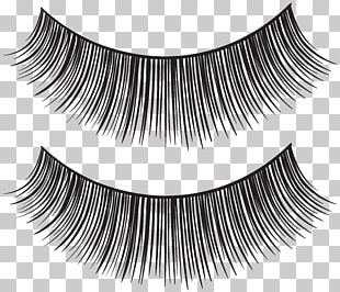 Eyelash Extensions Mascara PNG