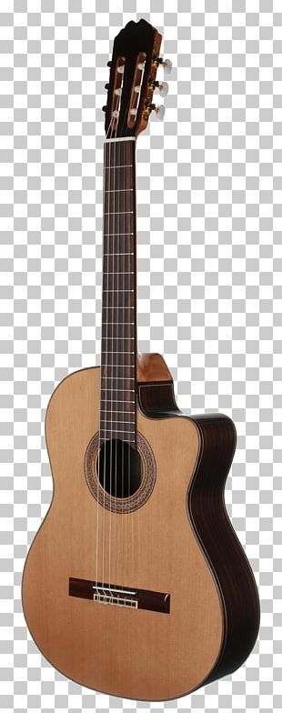 Taylor Guitars Classical Guitar Steel-string Acoustic Guitar Musical Instruments PNG