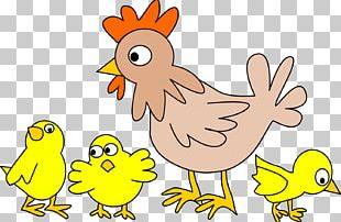 Chicken Meat Rooster Hen PNG