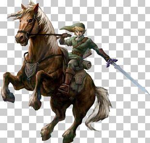 The Legend Of Zelda: Twilight Princess HD Link The Legend Of Zelda: Ocarina Of Time Princess Zelda The Legend Of Zelda: Breath Of The Wild PNG