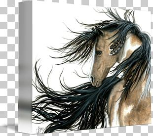 Mustang American Paint Horse Friesian Horse American Indian Horse Stallion PNG