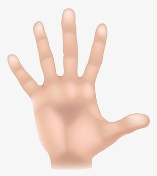 Open Animation Hand PNG