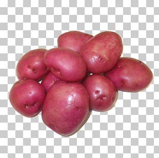Potato Cranberry Red Pontiac Food Izambane PNG
