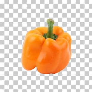 Bell Pepper Capsicum Baccatum Chili Pepper Paprika Vegetable PNG