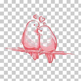 Love Wedding Invitation YouTube Valentine's Day PNG