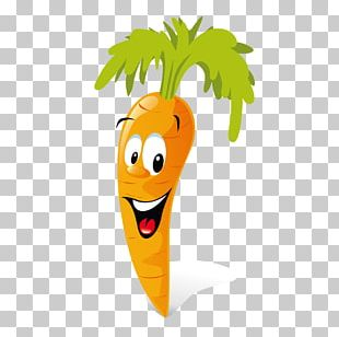 Carrot Animation Vegetable PNG