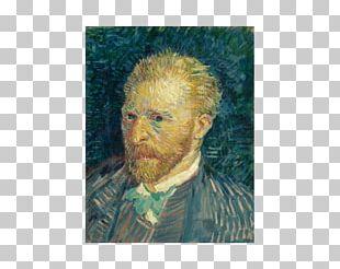 Musée Du Louvre Louvre Abu Dhabi Vincent Van Gogh Van Gogh Self-portrait PNG