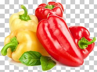Capsicum Chili Pepper Bell Pepper Vegetable Black Pepper PNG
