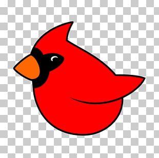 Beak Snout Cartoon PNG