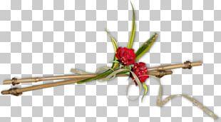 Diary Blog Floral Design LiveInternet PNG