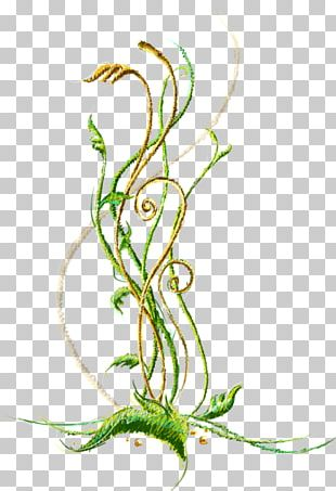 Floral Design Illustration Portable Network Graphics JPEG PNG