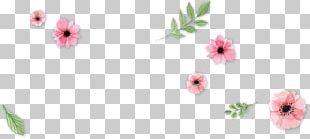 Floral Design Cut Flowers Petal Flowering Plant PNG