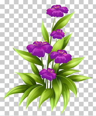 Flower Purple Stock Illustration PNG