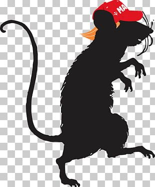 Laboratory Rat Mouse Silhouette PNG
