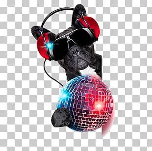 Dog Stock Photography Nightclub Disc Jockey Disco PNG