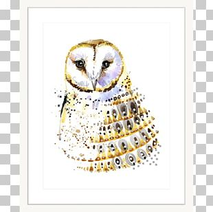 Owl Watercolor Painting Poster PNG