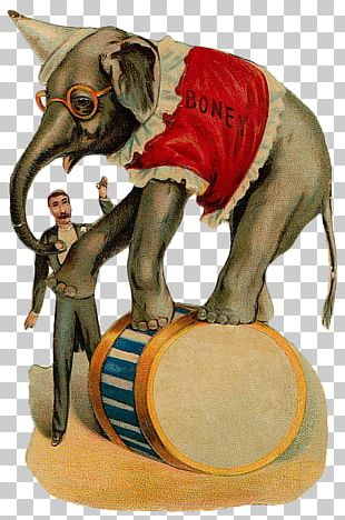 Circus Elephant Clown Illustration PNG