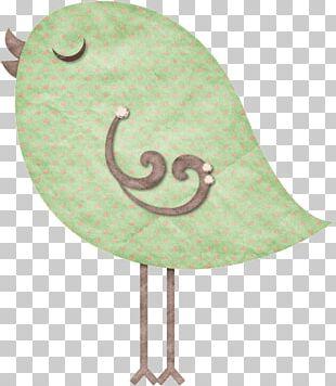 Drawing Bird Felt Textile PNG