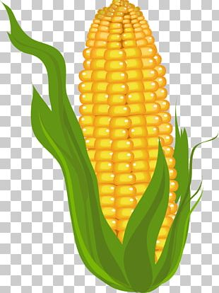 Candy Corn Corn On The Cob Maize PNG